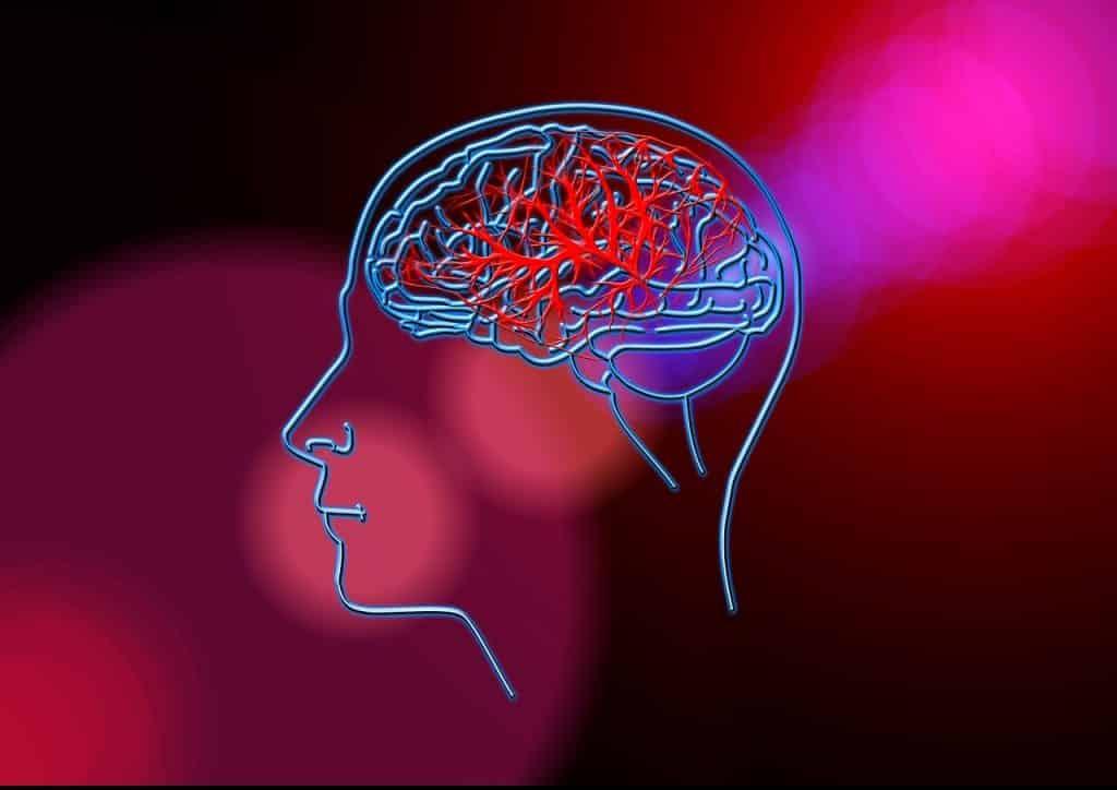 โรคหลอดเลือดสมองเกิดจาก...